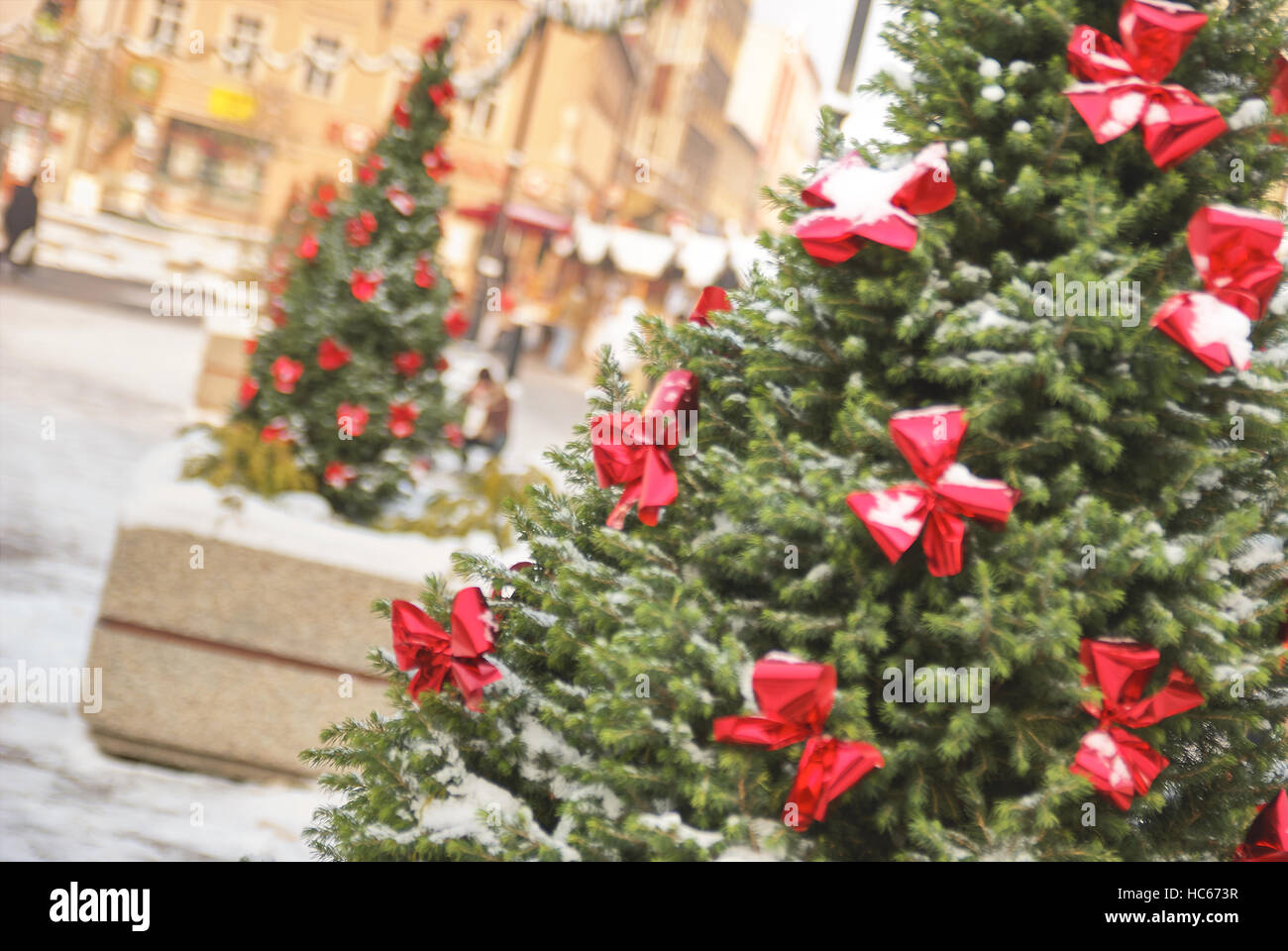Large outdoor Christmas tree in Rybnik Poland - Stock Image