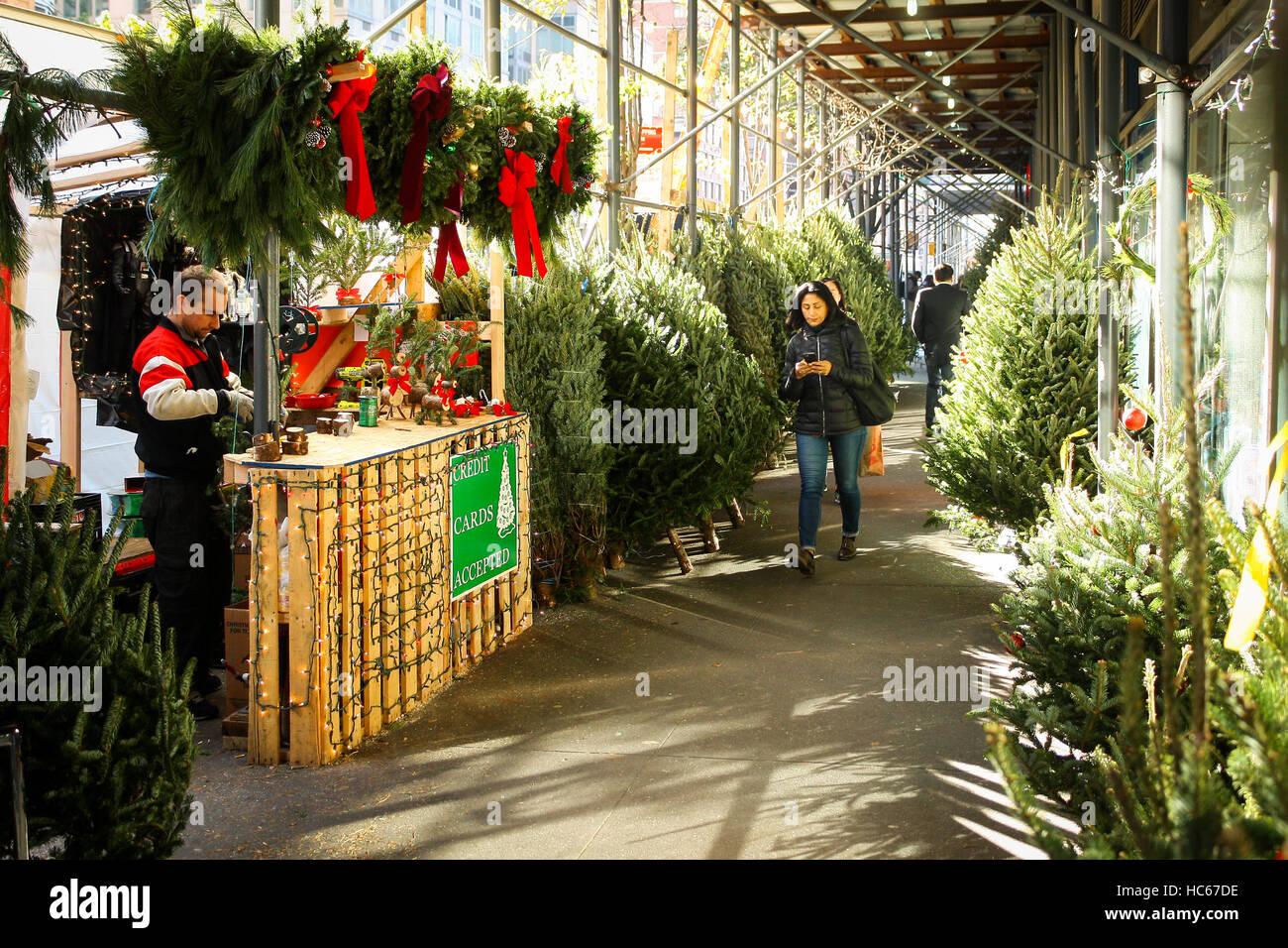 Nyc Christmas Tree Market Stock Photos & Nyc Christmas Tree Market ...