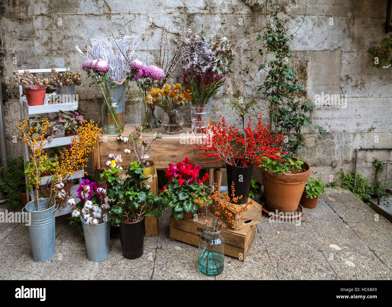Beautiful flowers for sale with stone wall backdrop arrangement in beautiful flowers for sale with stone wall backdrop arrangement in bouquets in pots and buckets in a flower shop before christmas in istanbul turkey izmirmasajfo Gallery