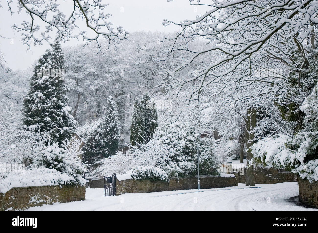 English Gardens and Lane covered in Snow Sheffield England UK United Kingdom - Stock Image