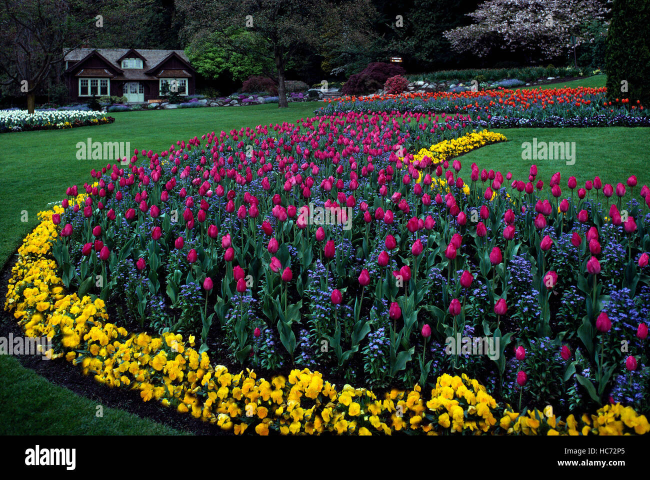 Stanley Park Vancouver Bc British Columbia Canada Flowers