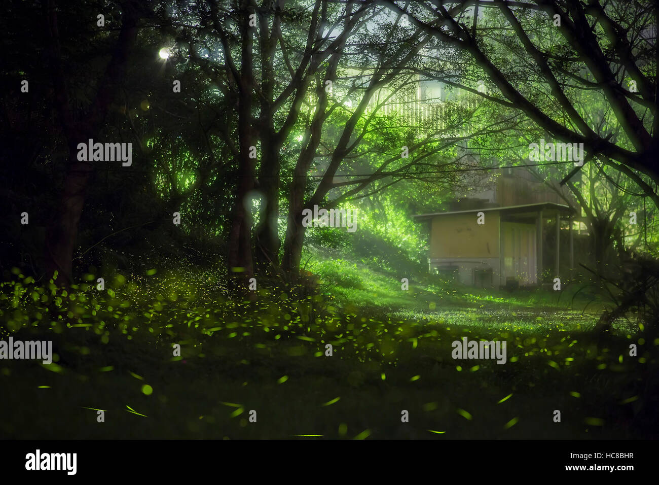 Dreamy Fireflies and a house, photo taken at Taipei, Taiwan - Stock Image