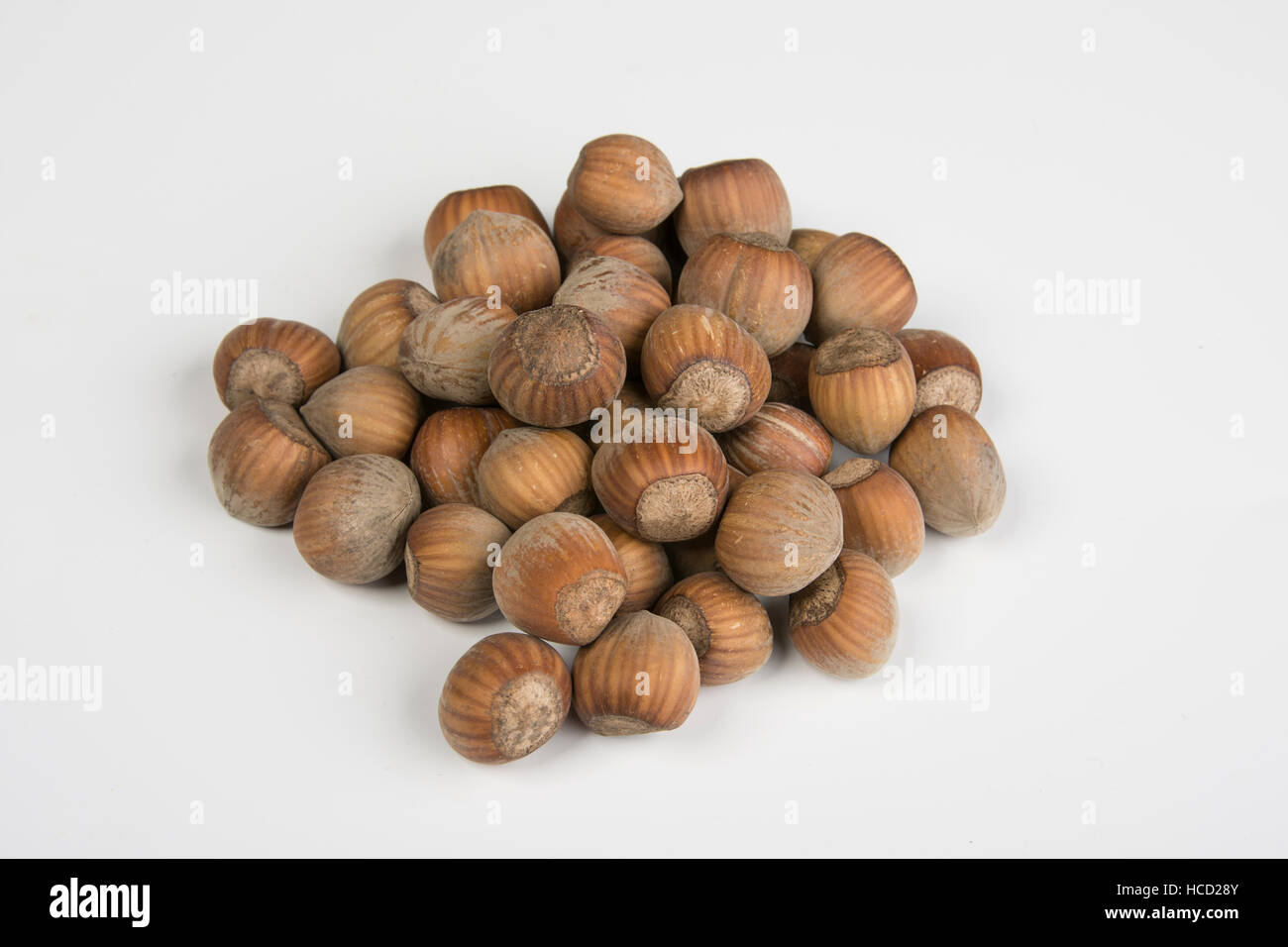 Nuts - Stock Image