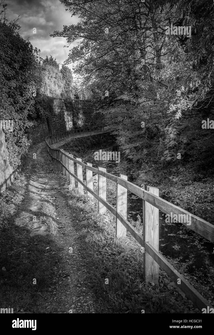 The Chesterfield Canal at Kiveton, Sheffield - Stock Image