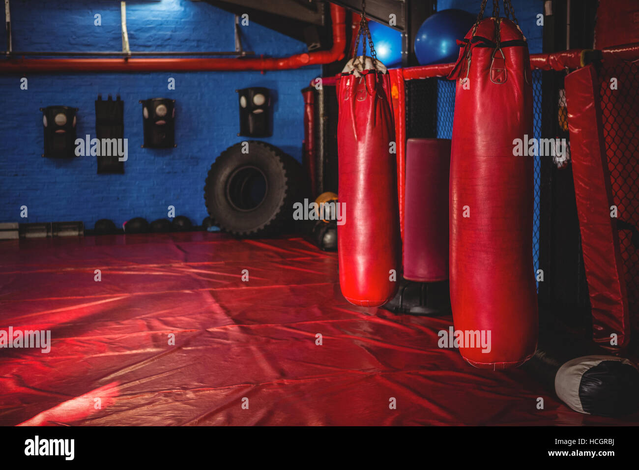 Punching bags in fitness studio - Stock Image