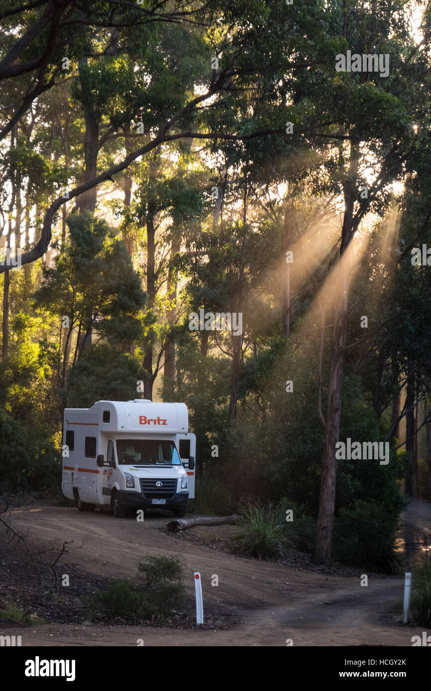 A Britz VW campervan in Fortescue Bay Camping Ground, Tasman National Park. - Stock Image