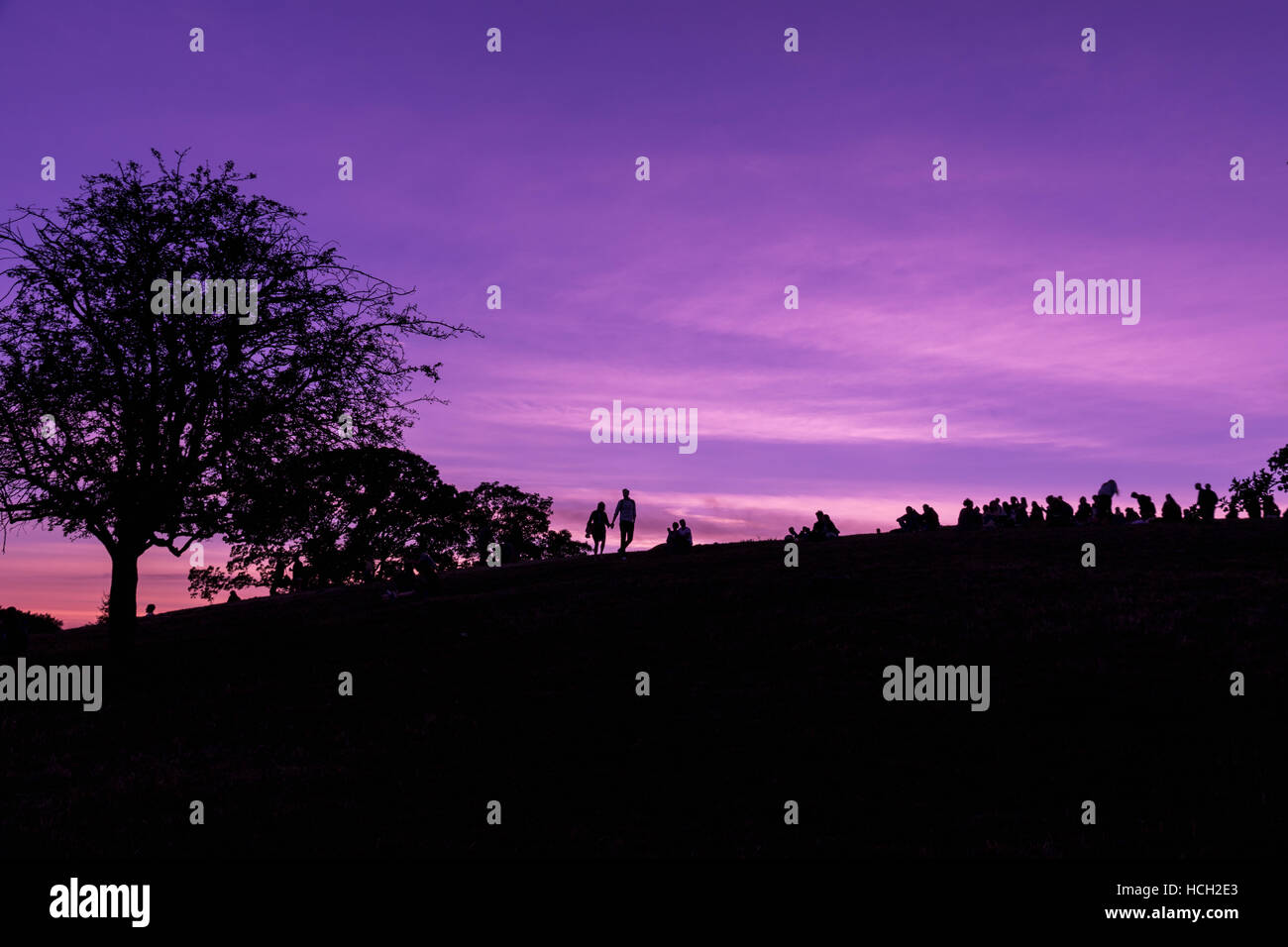 Silhouette of Primrose Hill in London against a purple sky - Stock Image