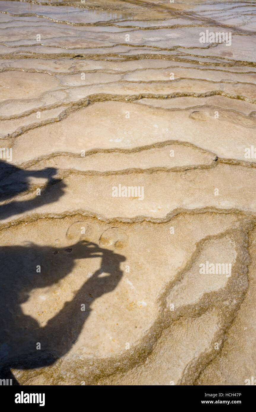 Teton County, Wyoming: Shadow of two visitors taking photos on the microbial mat at Grand Prismatic Spring in Yellowstone - Stock Image