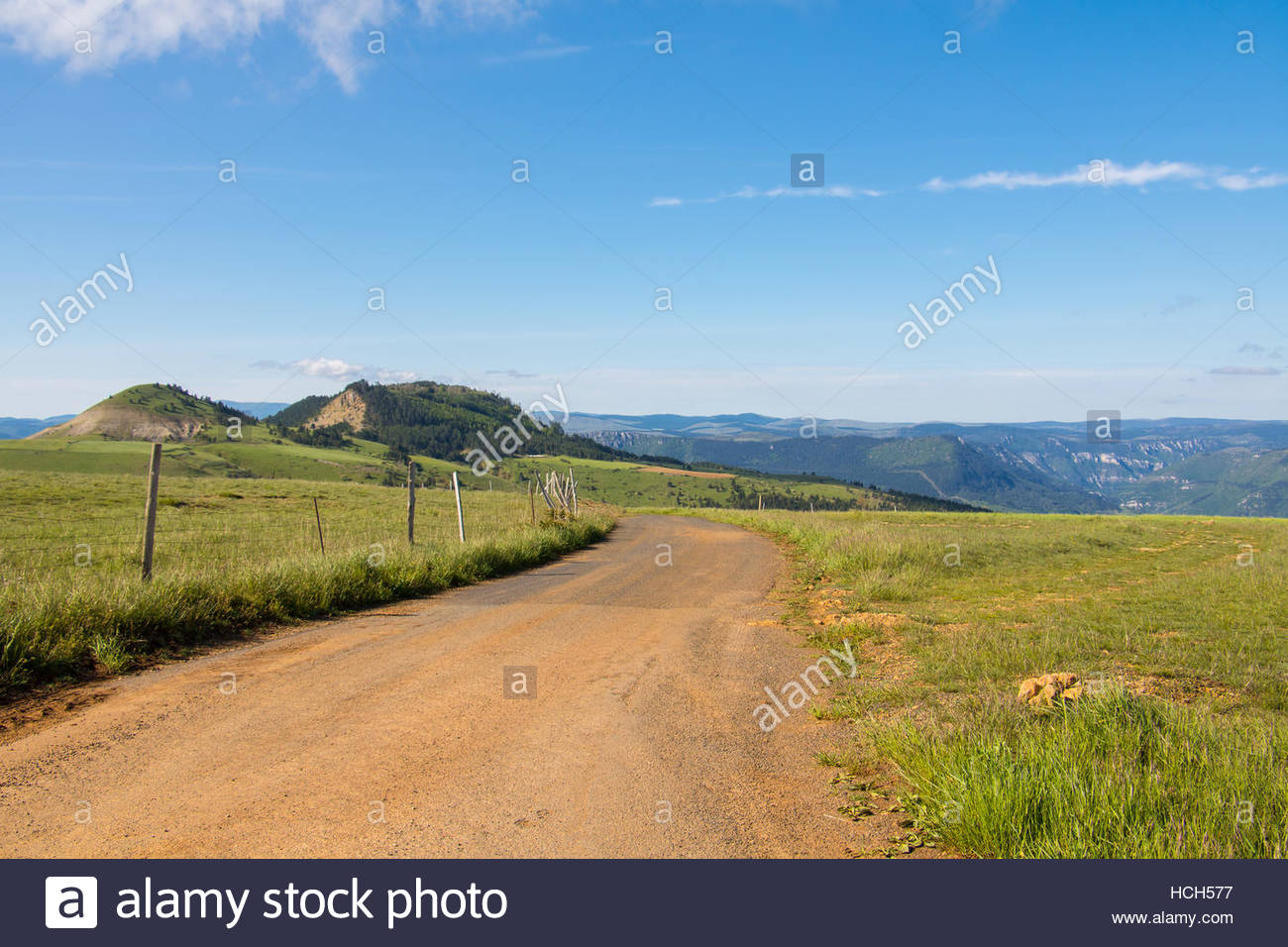 French Nature Landscape Park National des Cevennes, Lozère, farming landscape green, wooden fence pasture road, - Stock Image