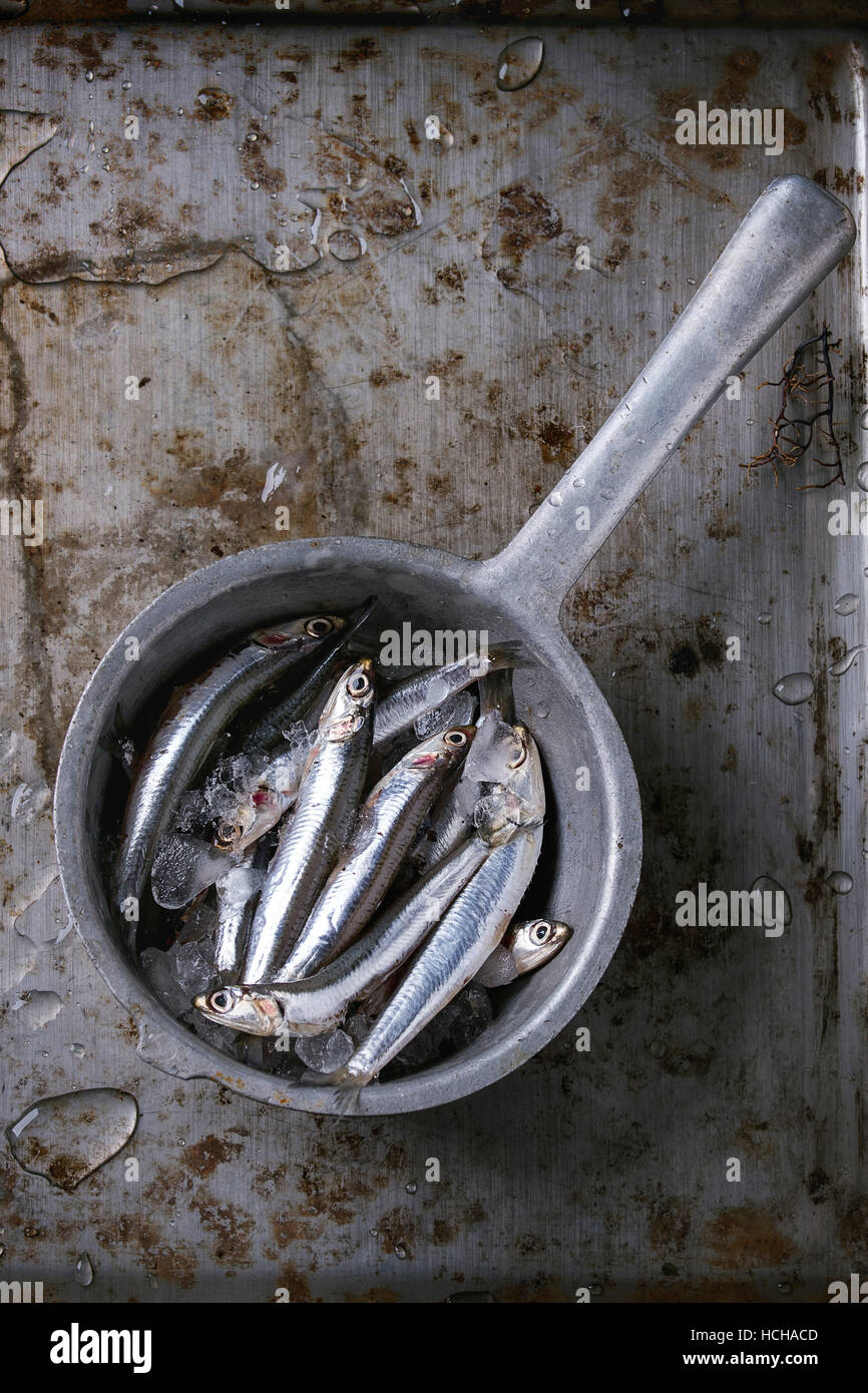 Lot of raw fresh anchovies fishes on crushed ice in vintage colander over old dark metal background. Top view. Sea - Stock Image