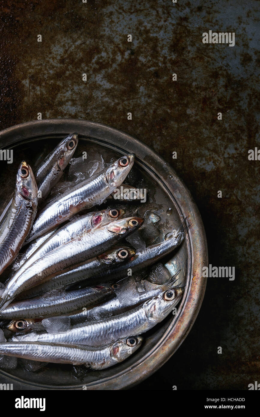 Lot of raw fresh anchovies fishes on crushed ice in vintage plate over old dark metal background. Top view. Sea - Stock Image