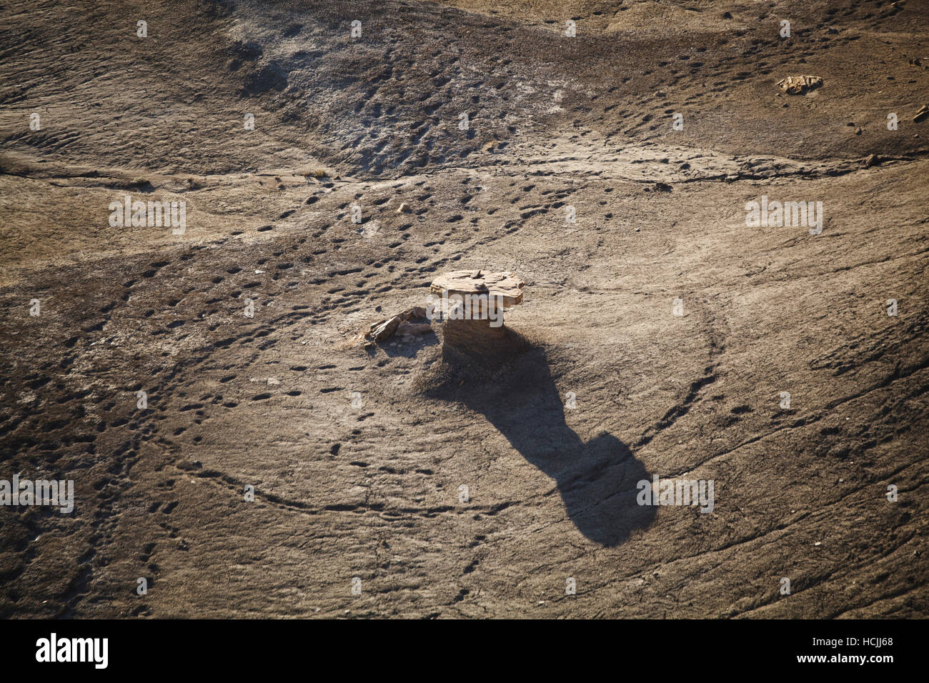 Cattle and horse tracks encircle a stone hoodoo in the badlands near Factory Butte, Utah. - Stock Image
