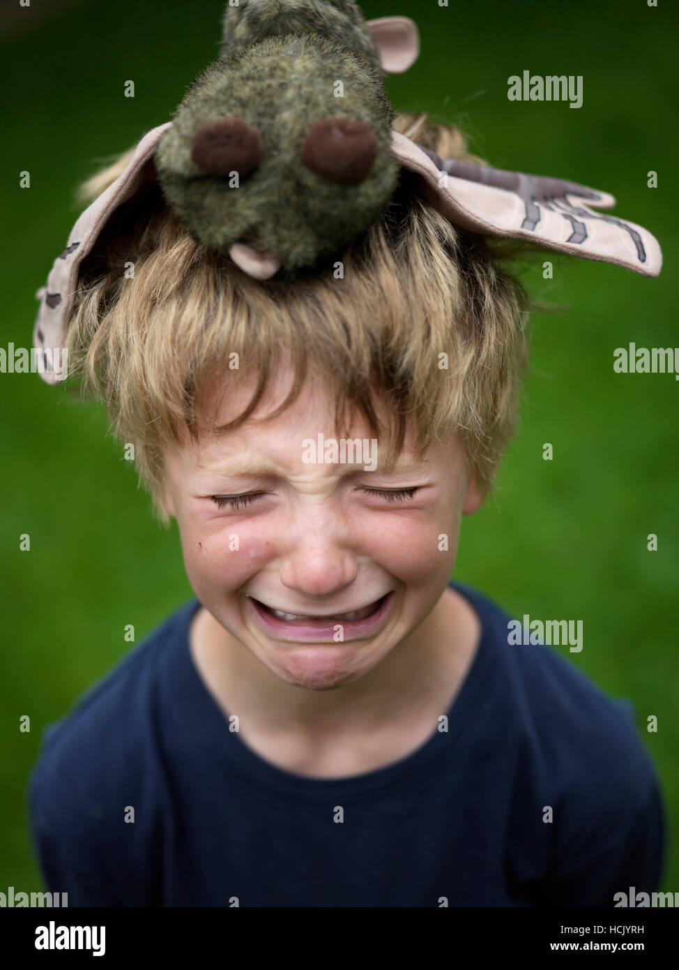 Young boy cries, with stuffed animal on his head. - Stock Image