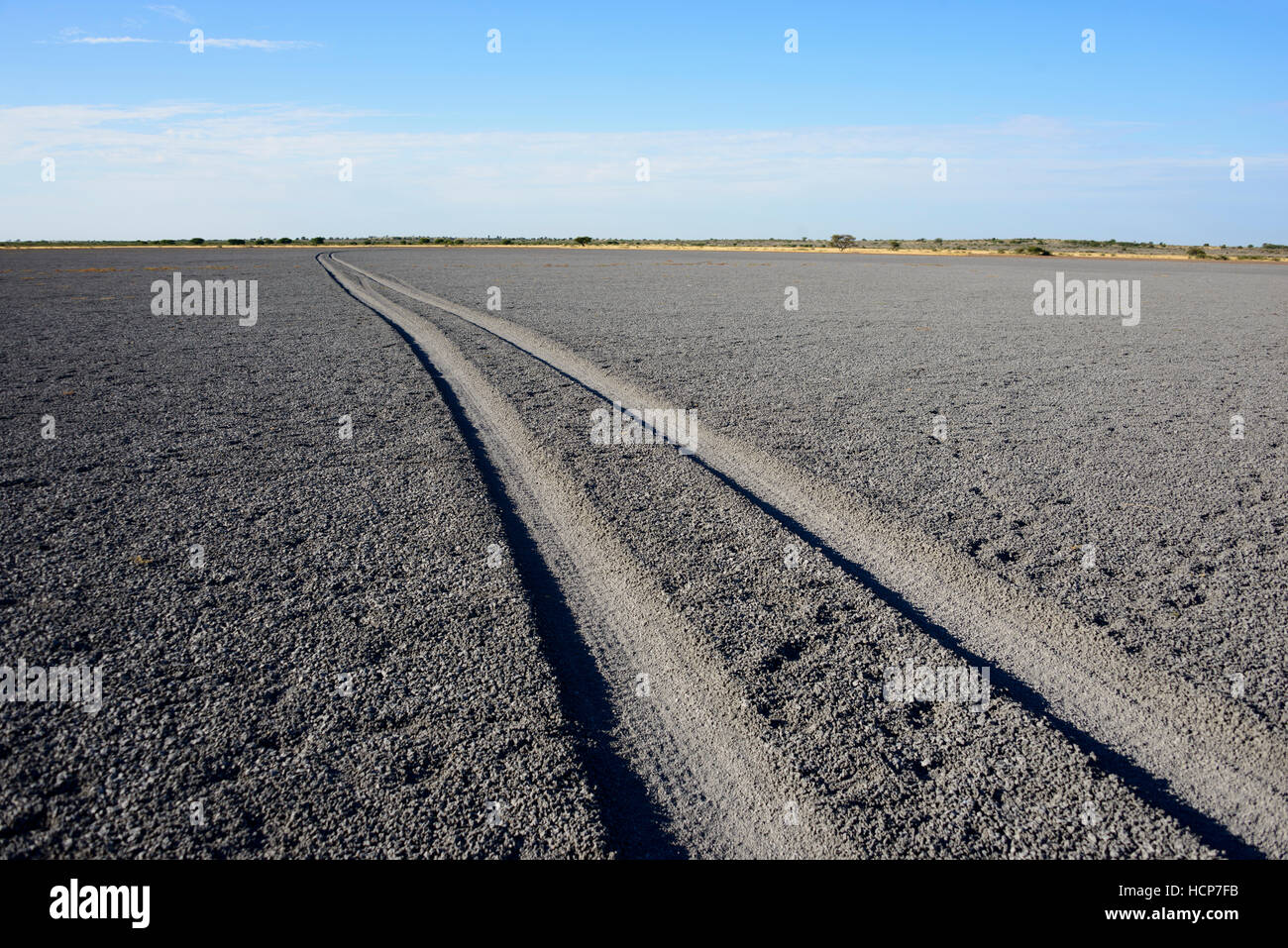 Tire tracks through Deception Pan in Deception Valley of the Central Kalahari Game Reserve, Botswana - Stock Image