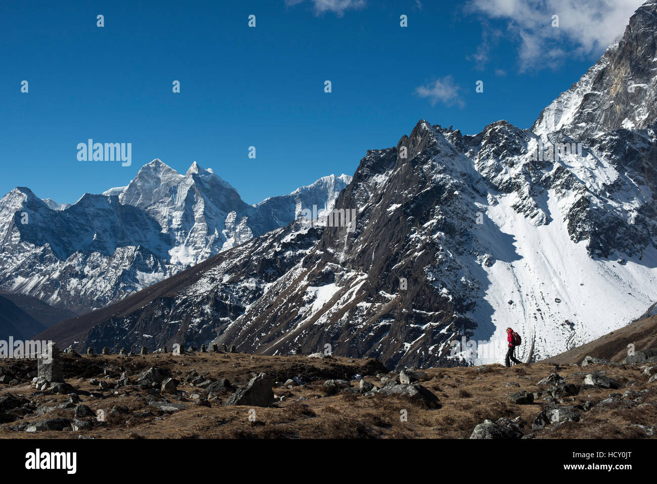 A trekker in the Everest region on the way up to Everest Base Camp seen here walking in front of Cholatse, Khumbu - Stock Image