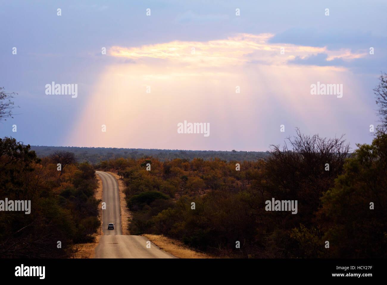 Sunset, Kruger National Park, South Africa, Africa - Stock Image