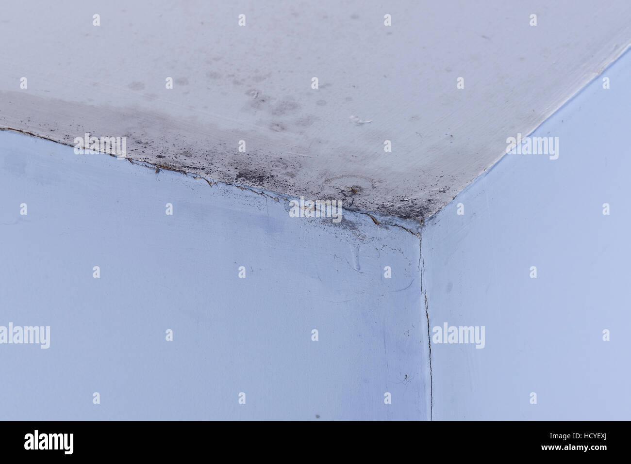 Black mould on the walls and ceiling of a room - Stock Image