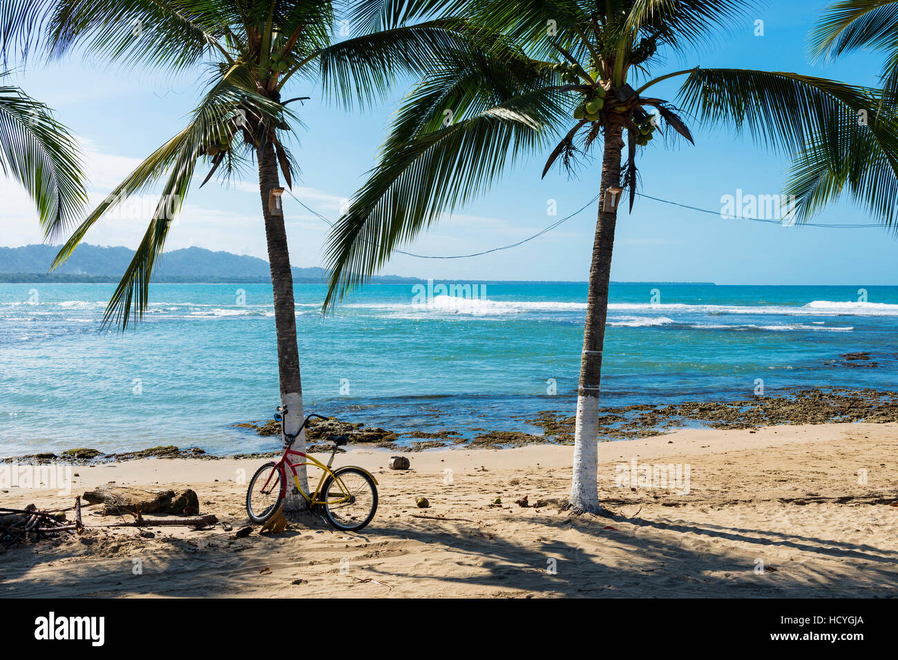 View of a beach with palm trees in Puerto Viejo de Talamanca, Costa Rica, Central America Stock Photo
