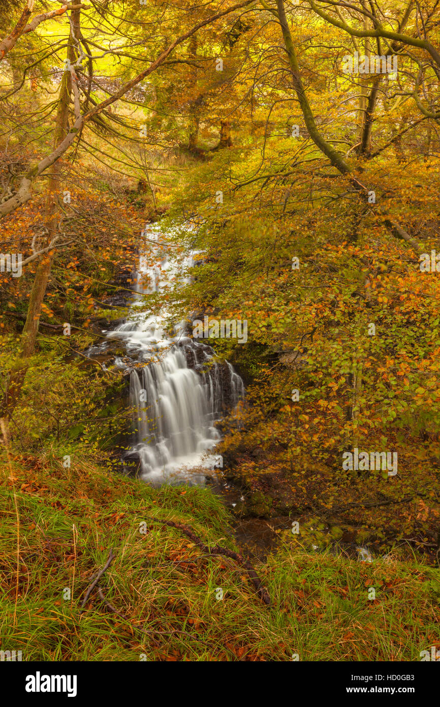The Falls at Scaleber Force - Stock Image