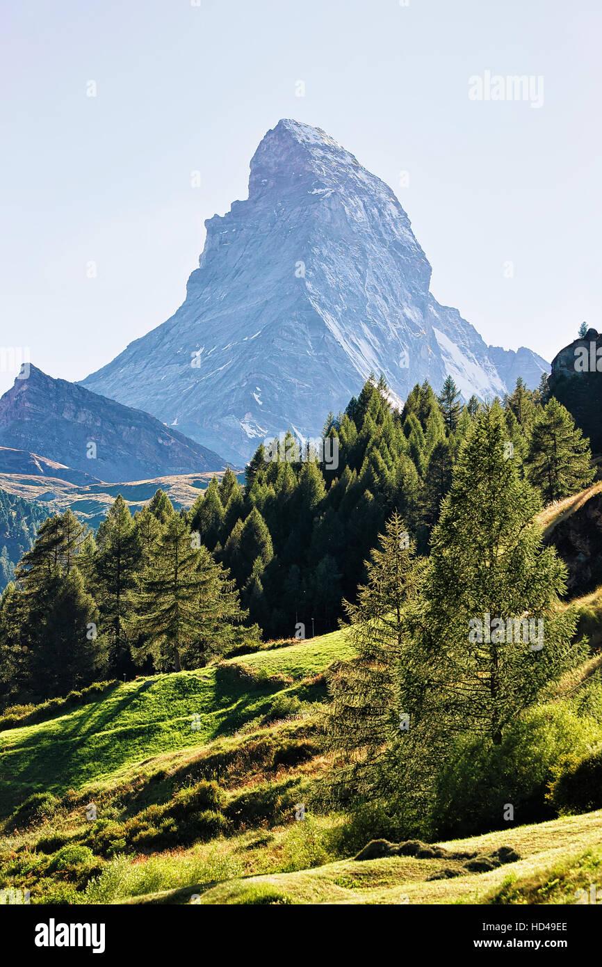 Matterhorn mountain and green forest on the hill in Zermatt of Switzerland in summer. - Stock Image