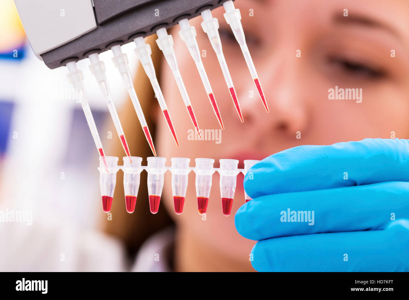 MODEL RELEASED. Woman holding micro tubes and pipettes, close up. - Stock Image