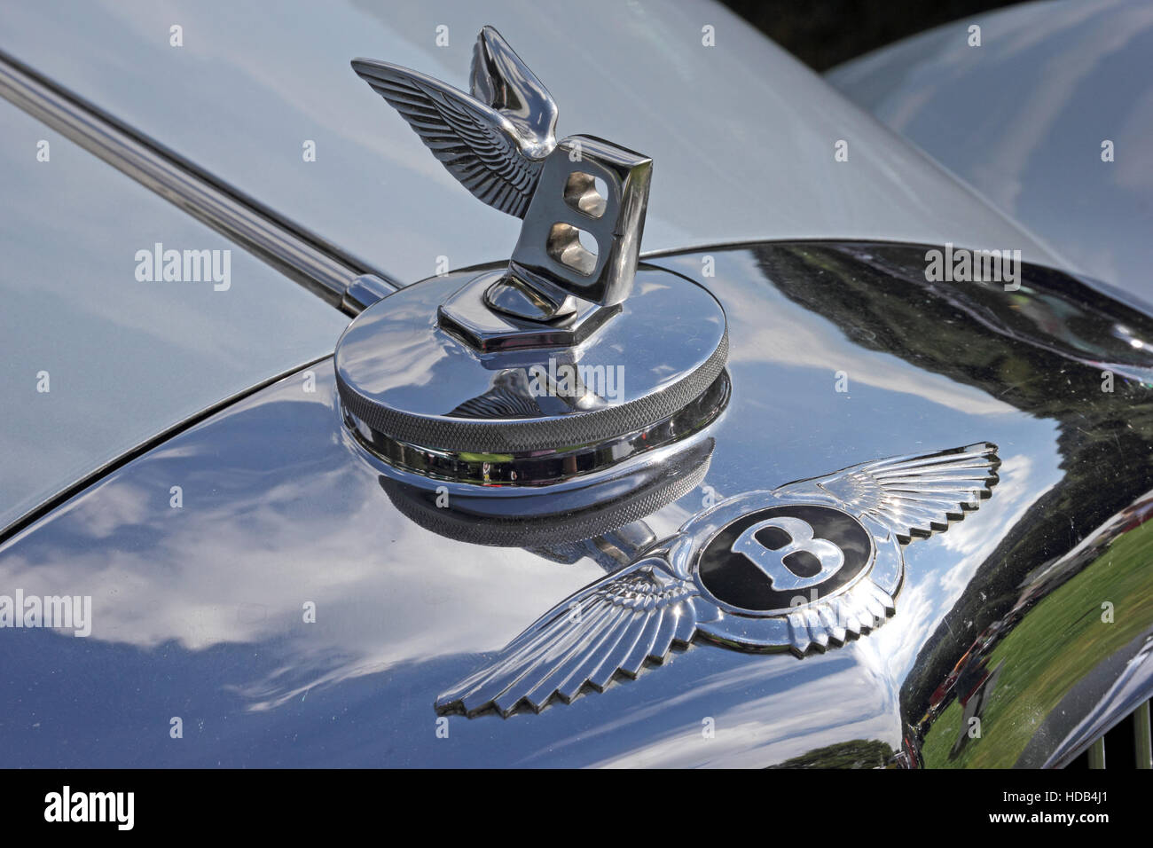 Black Bentley badge and Flying B mascot on top of radiator grille Stock Photo