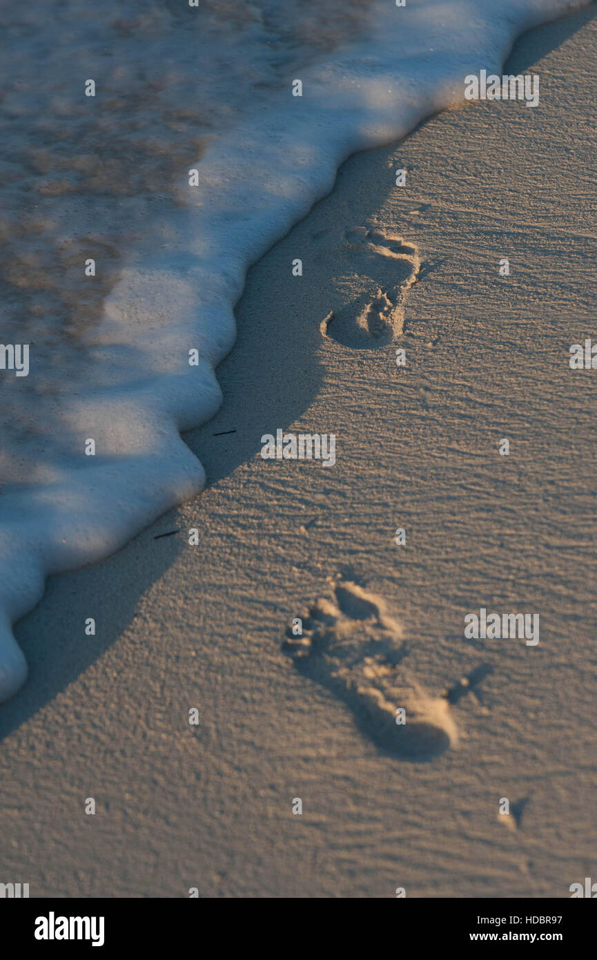 Sunset highlights footprints in the sand / beach on the edge of the sea / ocean in Grace Bay Turks and Caicos | - Stock Image