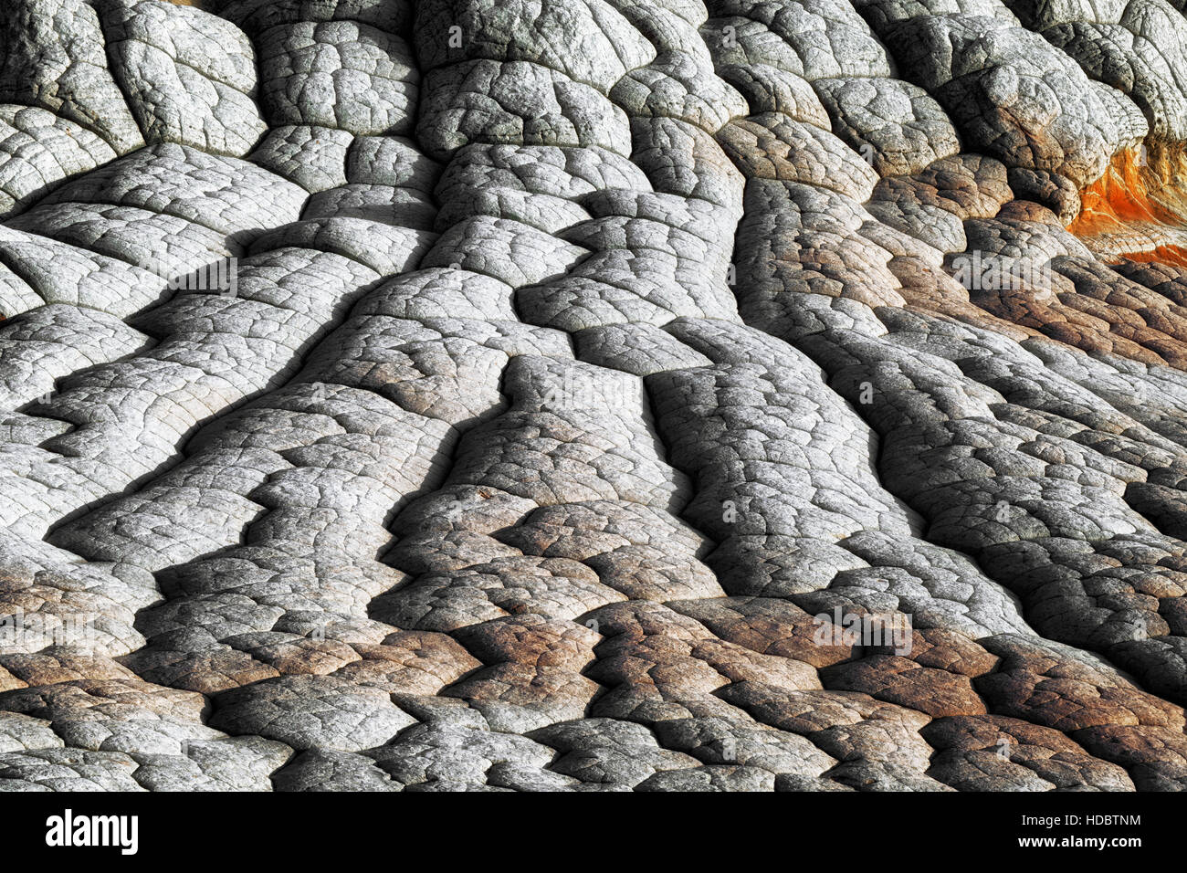 Evening light on the patterns of cross bedding brain rock at White Pocket in Arizona's remote Vermilion Cliffs National - Stock Image