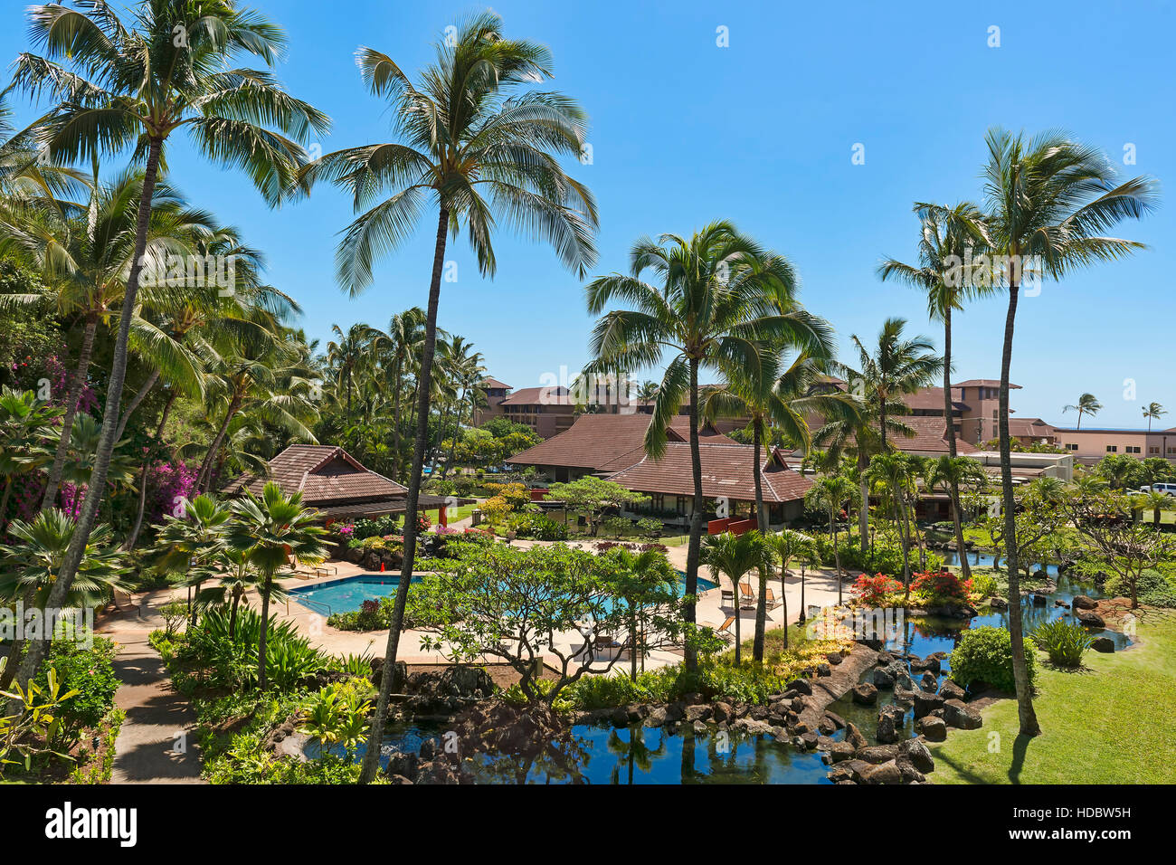 Hotel resort with pool and palm trees, Poipu, Koloa, Kaua'i, Hawaii, USA - Stock Image