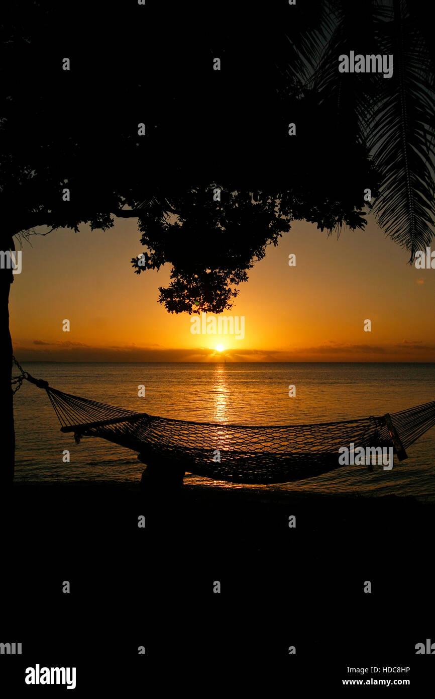 Hammock. Lifuka island. Ha´apai islands. Tonga. Polynesia - Stock Image