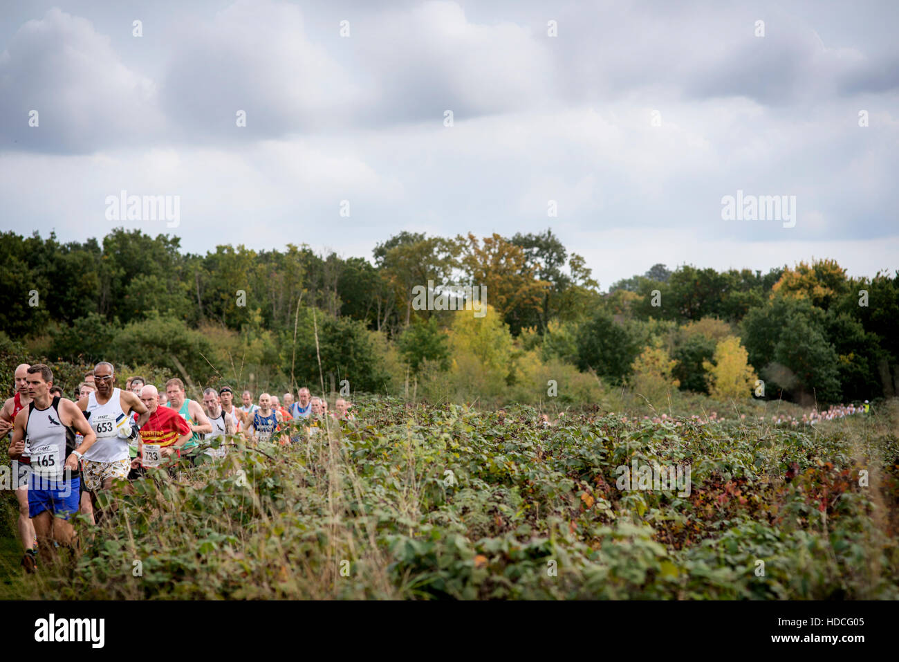 Runners compete in the Metropolitan Cross Country League at Claybury Park, Woodford Green, London on 10 October - Stock Image