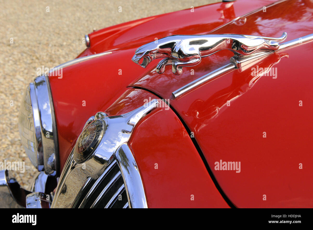 Red Jaguar Mk2 V6 bonnet mascot - Stock Image