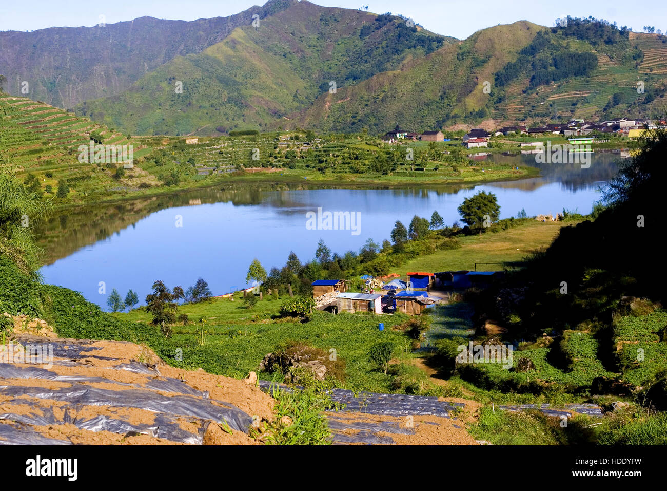 Cebong Lake situated in the village Sembungan , a village in Central Java supreme. - Stock Image