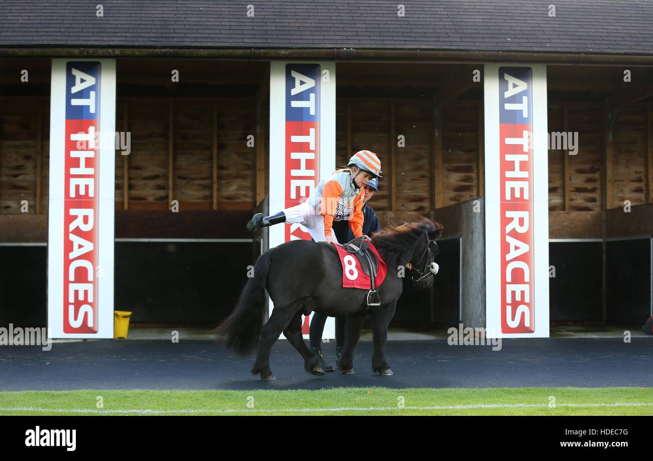 A young Jockey mounts a Shetland Pony at Plumpton Racecourse in Sussex. - Stock Image