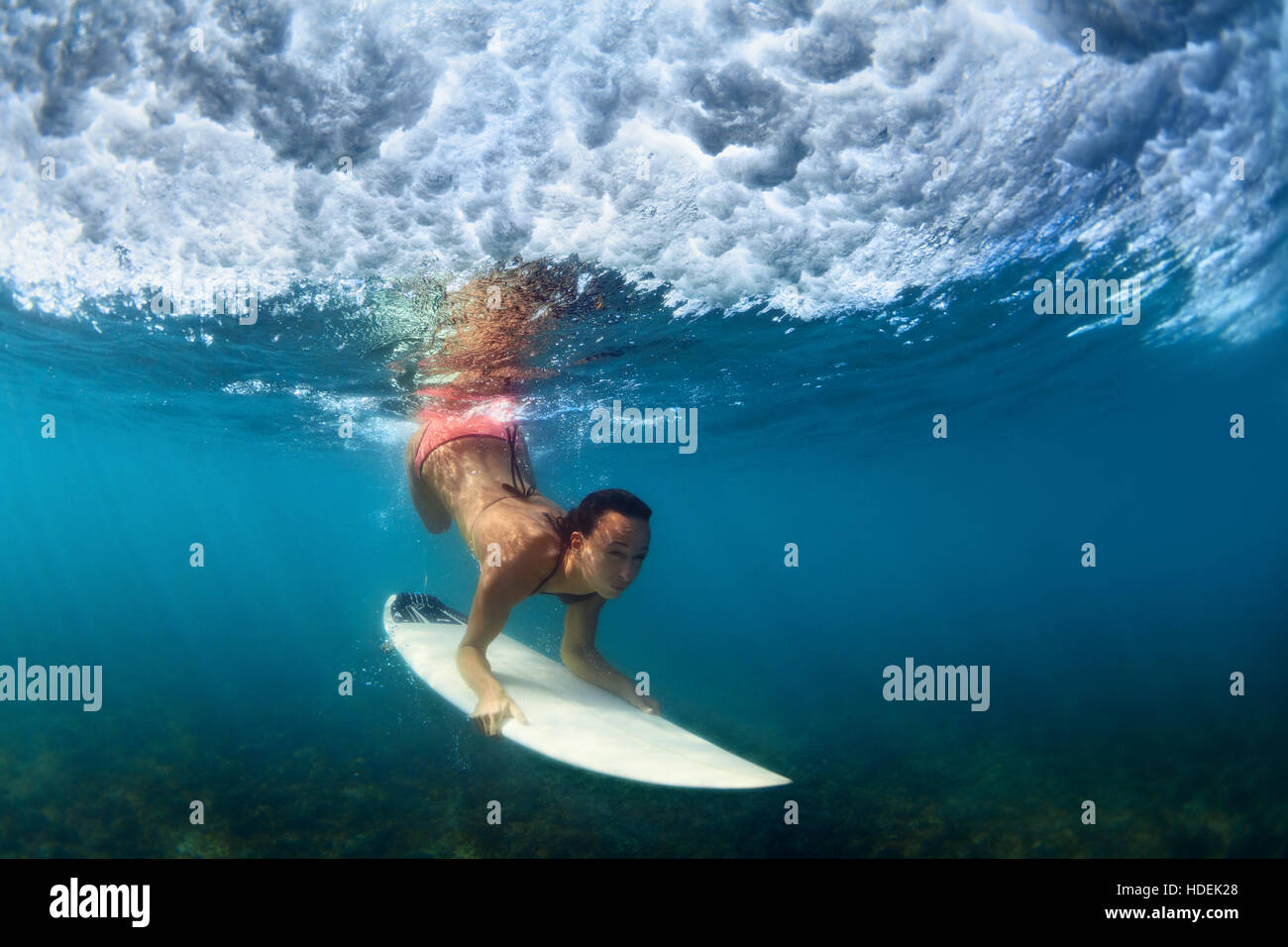 Girl in bikini in surfing action. Surfer with surf board dive underwater under breaking ocean wave Extreme water - Stock Image
