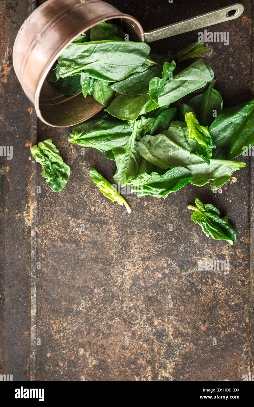 Spinach in the copper pt on the metal background vertical - Stock Image