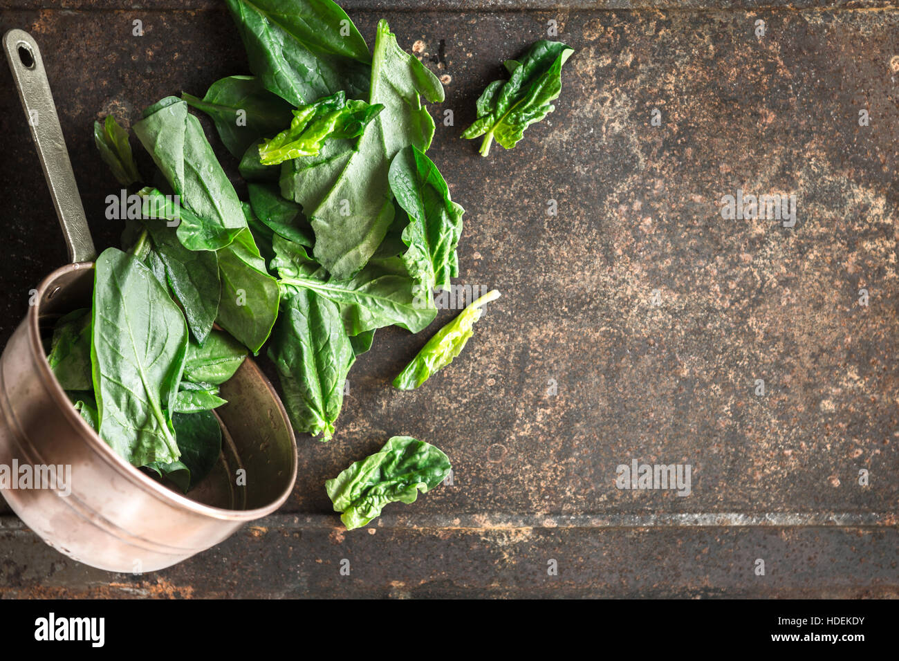 Spinach in the copper pt on the metal background top view - Stock Image