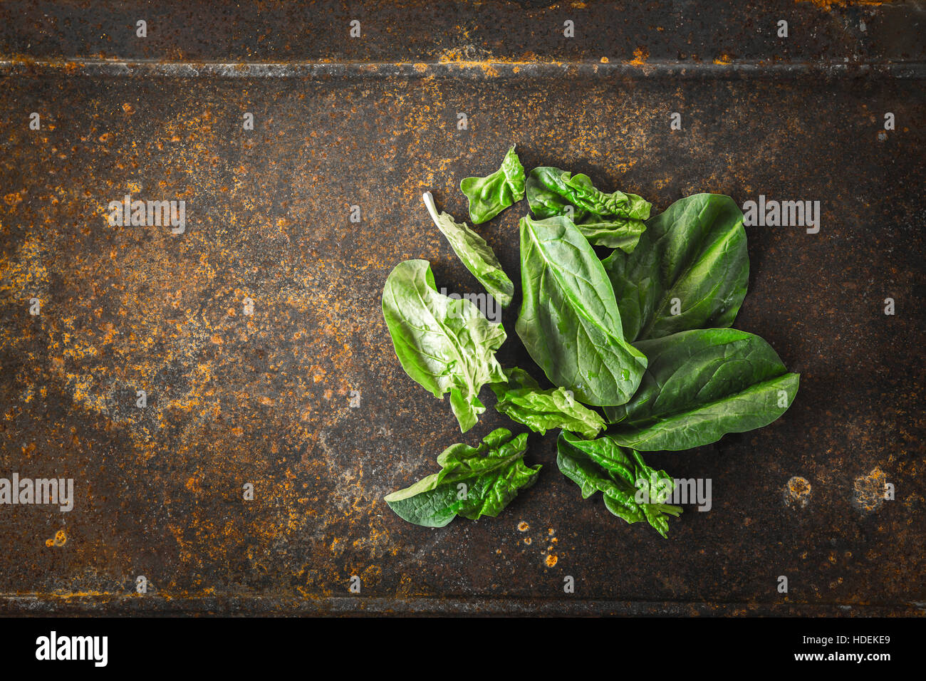 Fresh spinach on the metal rusty background top view - Stock Image
