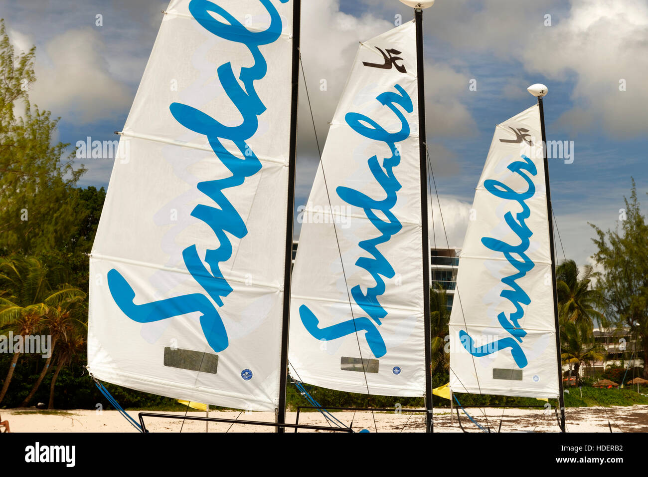 Sails of the Sandals Beach Resort Hobie Cats. - Stock Image