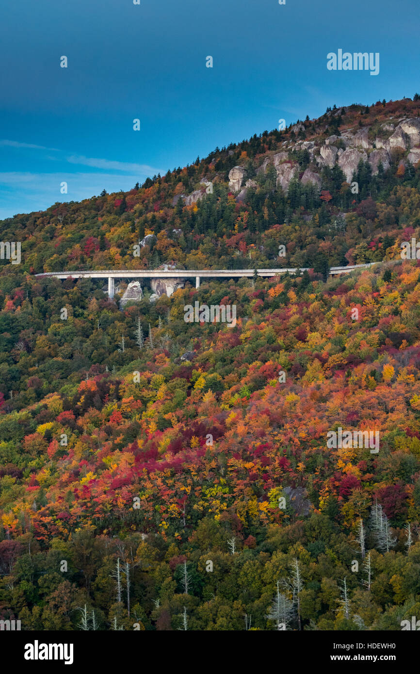 Leaves Changing Color Around Linn Cove Viaduct in Fall Vertical - Stock Image