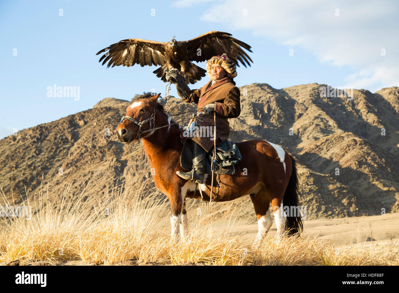 Bayan Ulgii, Mongolia, October 2nd, 2015: Old eagle hunter with his Altai Golden Eagle on his horse Stock Photo