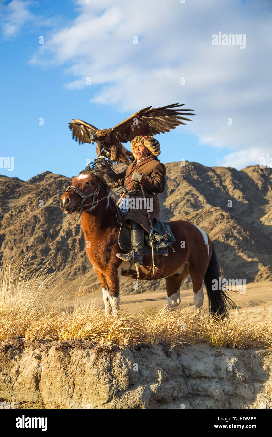 Bayan Ulgii, Mongolia, October 2nd, 2015: Old eagle hunter with his Altai Golden Eagle on his horse - Stock Image