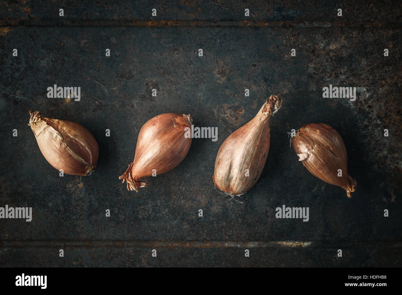 Shallots  on the  old metal background - Stock Image