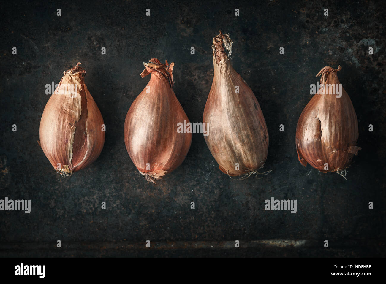 Shallots  on the  old metal background  horizontal - Stock Image