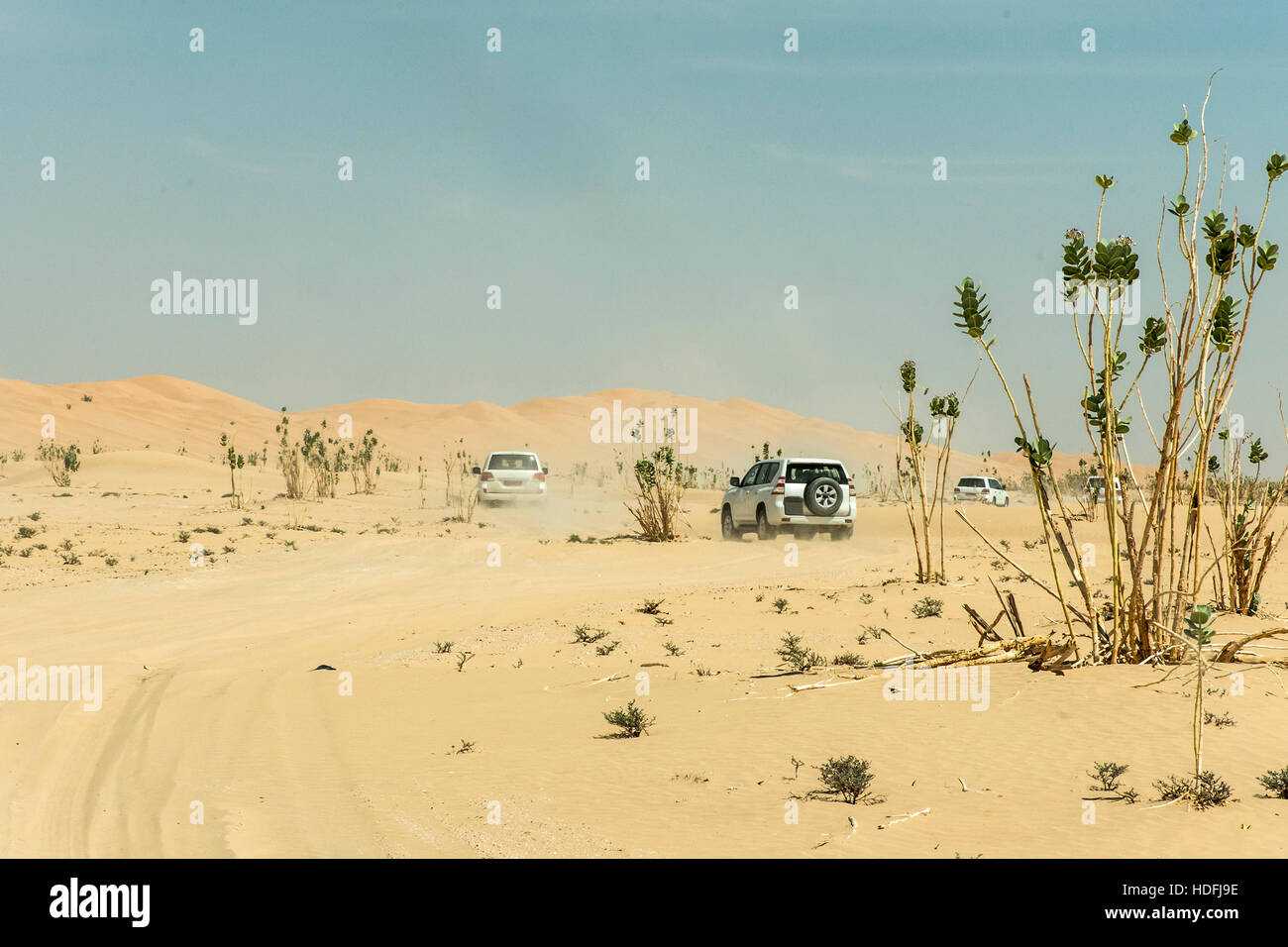 Jeeps traditional Safari Dune Bashing with tourists Oman Ubar in Desert Rub al Khali 6 - Stock Image