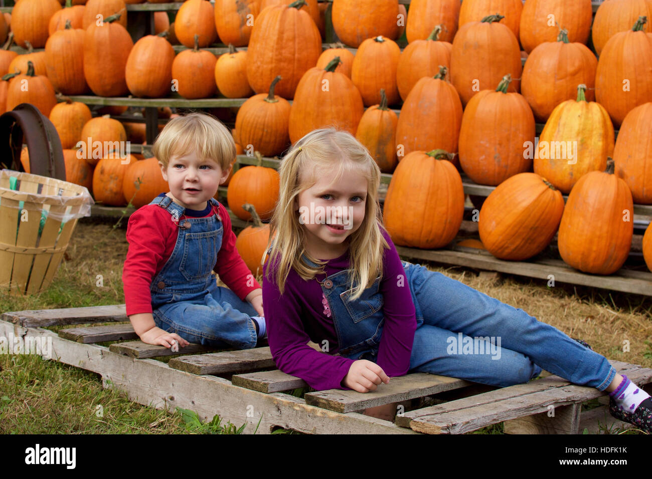adorable brother and sister siblings wearing overalls sitting in front of pumpkins at farm during fall autumn season - Stock Image