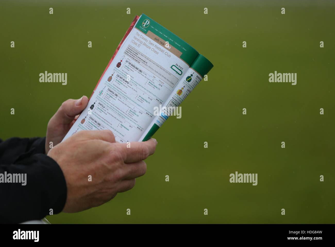 A race goer looks at a race card before placing a bet on a horse race at Plumpton race course in East Sussex, UK. Stock Photo