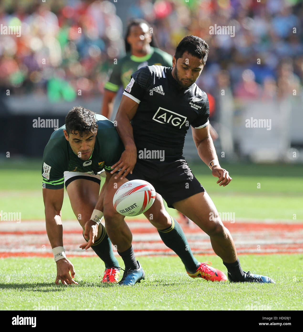 Green Rugby Player: Springbok Rugby Players Stock Photos & Springbok Rugby