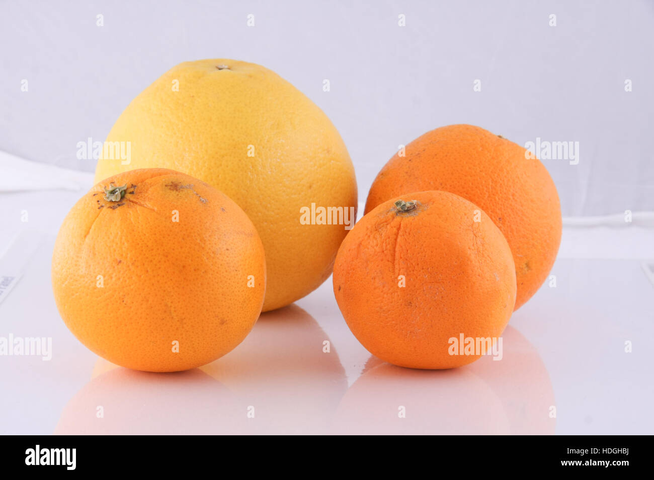 Orange in Isolate - Stock Image