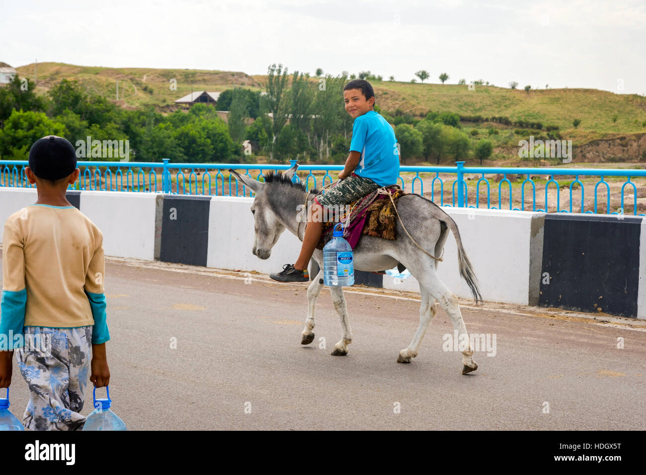 donkey transporting stock photos donkey transporting